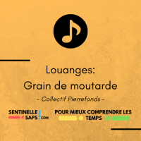 Grain de moutarde