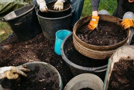 Transformer le corps humain en compost, une alternative aux funéraillesclassiques