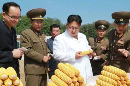 La Corée du Nord réduit les rations alimentaires à 300 g par jour et parpersonne