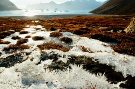 En Sibérie, la fin dupermafrost