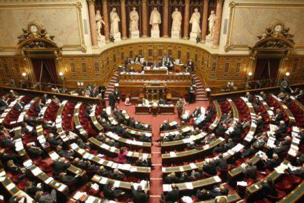 Le Sénat vote l'allongement de 12 à 14 semaines du délai légal del'IVG