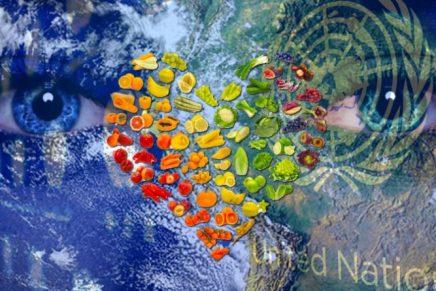 Les Nations Unies continuent de pousser le culte de GAIA en affirmant que les hommes devront devenir végétariens afin d'arrêter le changement climatique d'ici2050