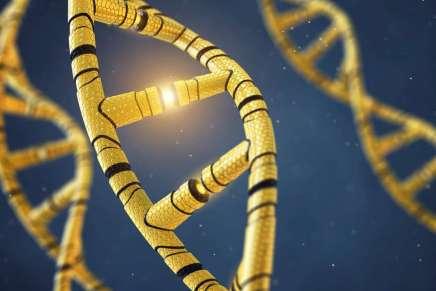 La plus grande étude ADN jamais réalisée le confirme : il n'y a pas de «gène gay»